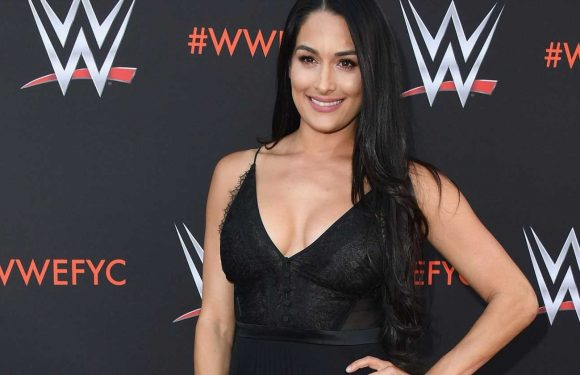Nikka Bella reveals she retired from WWE due to brain cyst