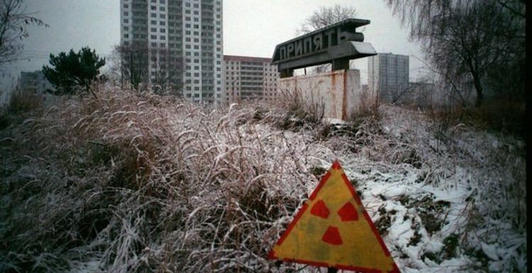 Chernobyl exclusion zone: Wildlife is eerily THRIVING in world's most radioactive region