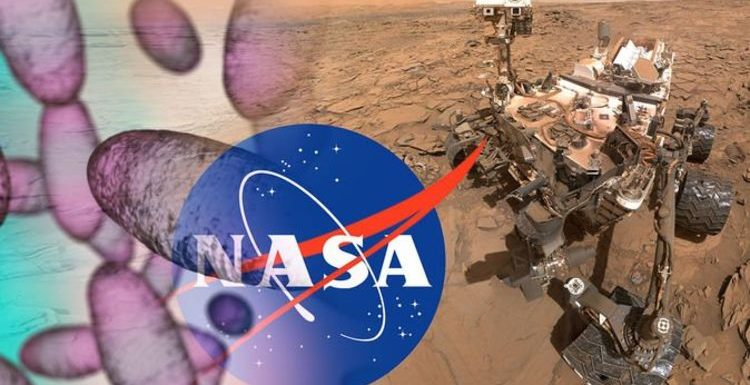 NASA Curiosity news: Mars rover 'selfie' shows extent of Red Planet rock damage