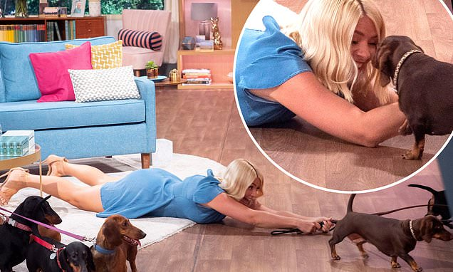 Holly Willoughby rolls around the floor with 10 sausage dogs