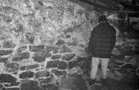 11 Things You Never Knew About 'The Blair Witch Project' on its 20th Anniversary