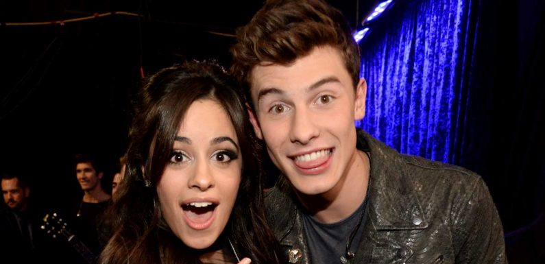 Smitten? Camila Cabello Fangirls at Shawn Mendes Concert Amid Dating Rumors