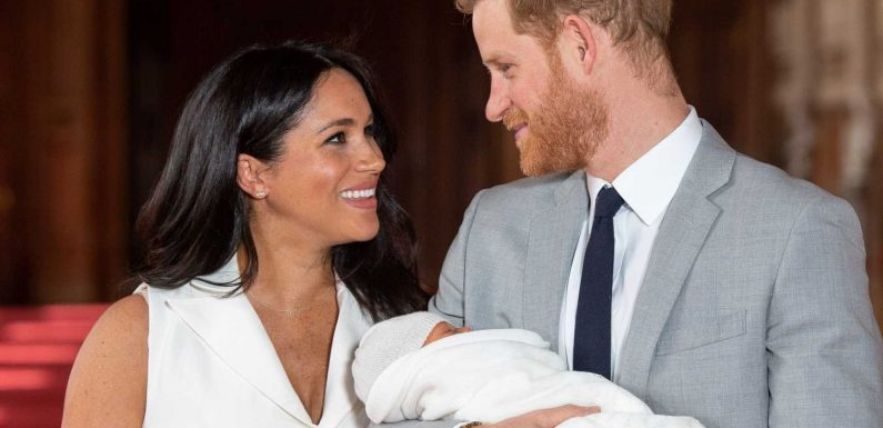Meghan Markle and Prince Harry 'want a big family' and the public can expect a 'second pregnancy announcement next year', royal author claims