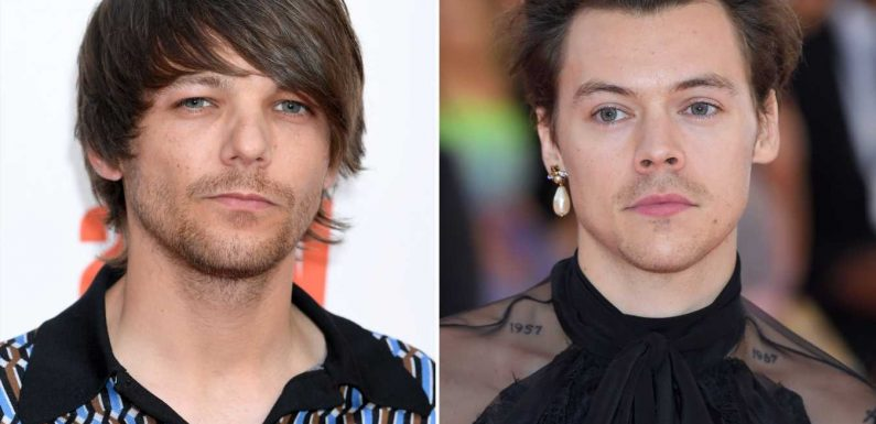 Louis Tomlinson Says He Wasn't Contacted About Euphoria's Graphic Animated Scene with Harry Styles