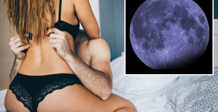 The Super Black Moon is here for a month and Leo's are about to have the best sex EVER – The Sun