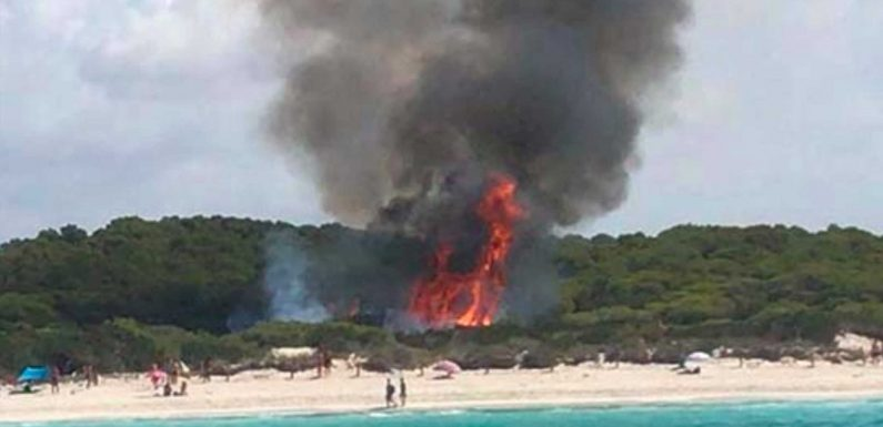 Wildfire panic in Majorca as 100 tourists are evacuated due to massive blaze encroaching on famous Es Trenc virgin beach