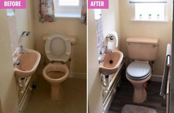 Mum reveals how she was able to transform her dingy downstairs loo into a boutique bathroom for just £60 – The Sun