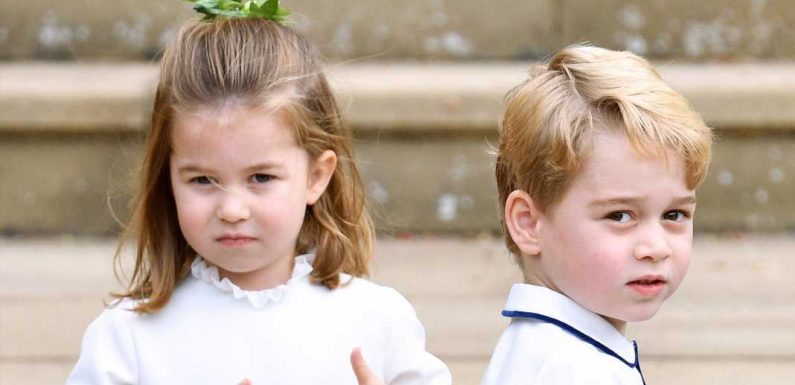 "Prince George and Princess Charlotte ""Lean on Each Other,"" As Playdates Can Be ""Tricky"""