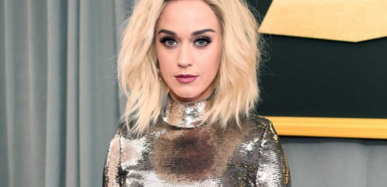 Katy Perry and Her 'Dark Horse' Collaborators Owe $2.78 Million in Copyright Suit, Jury Says