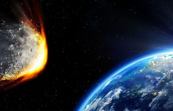 Asteroid warning: Human extinction fears as 'life destroying' event 'almost certain'
