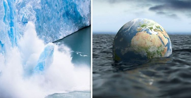 Antarctica discovery: Scientists stunned by major discovery – ramifications across globe