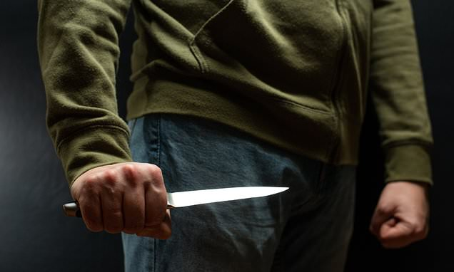 Police will use hi-tech scanners to create a 'knife database'