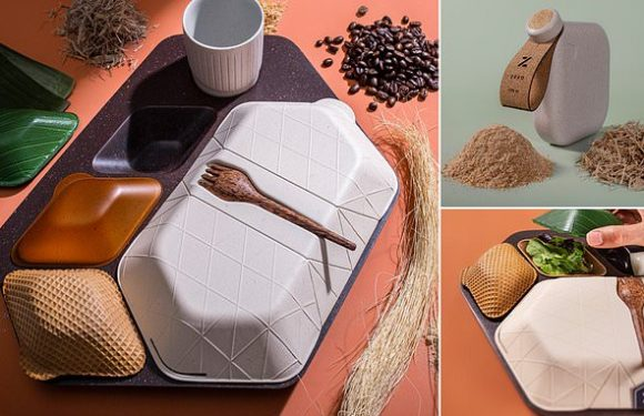 Designers create a biodegradable, eco-friendly in-flight dinner tray