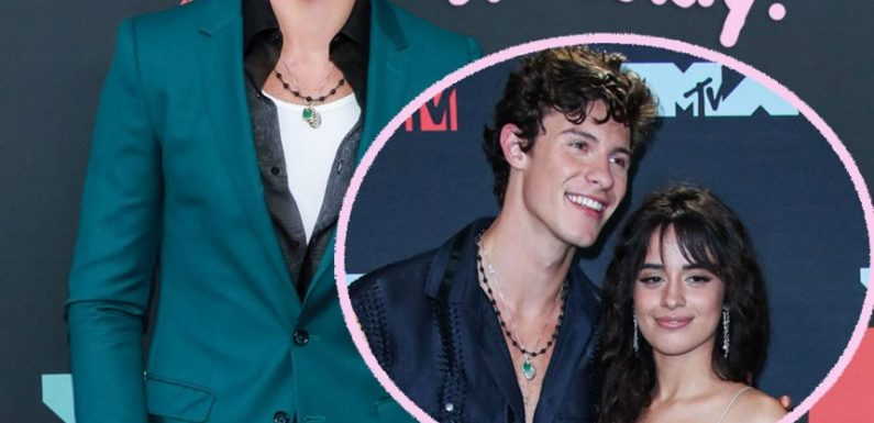 Shawn Mendes Defends His Relationship With Camila Cabello Is 'Not A Publicity Stunt'