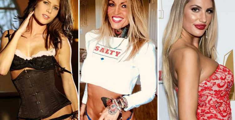 Suicide, death threats and prison… the tragic reality of life after sex work for the world's most famous female porn stars – The Sun