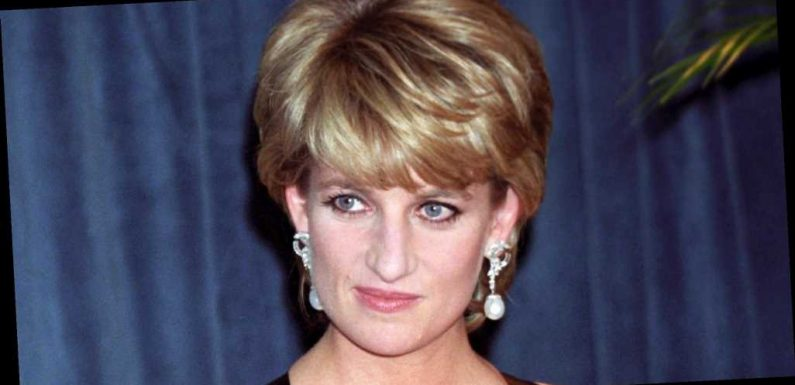 'Fatal Voyage' Reveals the 'Last Thing' Princess Diana Saw Before Her Death