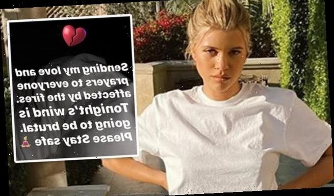 Sofia Richie does damage control after 'tone-deaf' wildfire comments
