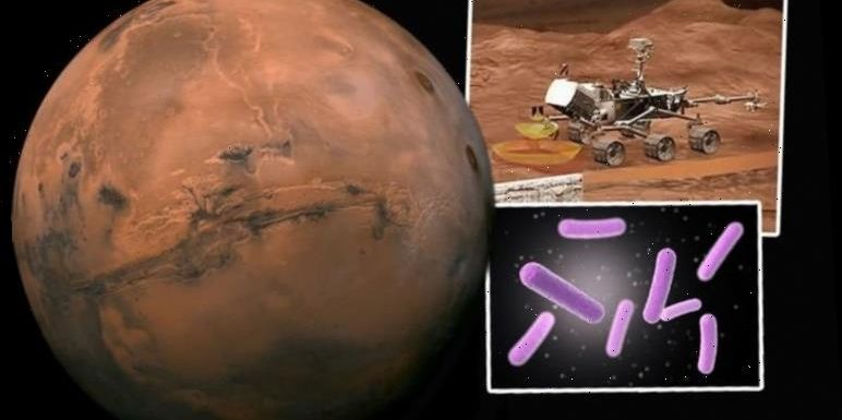 Life on Mars breakthrough? NASA's 2020 rover will dig for alien fossils and 'ancient life'
