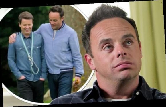Ant & Dec's DNA Journey: Fans in tears over their 'unbreakable' bond