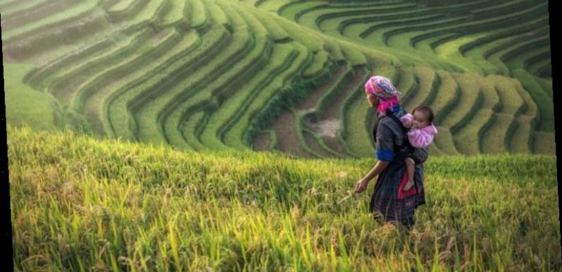 Dodge the crowds and head off the beaten track in Vietnam