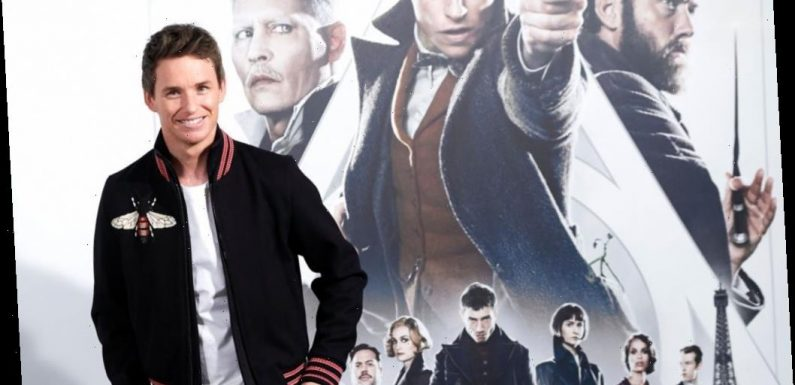 Truth Hurts: Why Fans Say 'Fantastic Beasts 3' Will Be Better Than the First Two