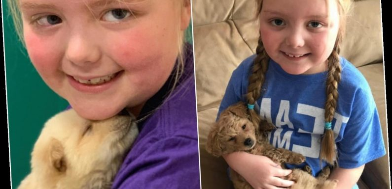 Family's anguish as girl, 8, with terminal cancer who touched hearts with her love of dogs passes away – The Sun