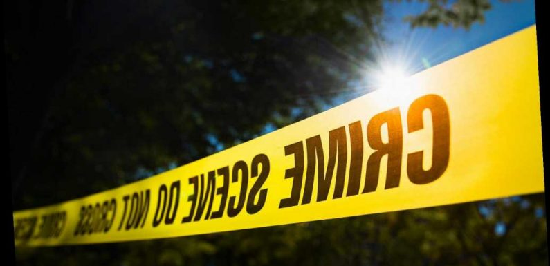 California Boys, Ages 11 and 14, Fatally Shot in Elementary School Parking Lot
