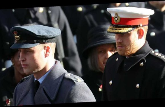 Prince Harry and Prince William Reunite at the Remembrance Sunday Service