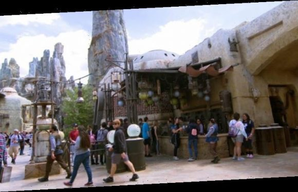 Theme Park Bits: Anakin at Galaxy's Edge, Harry Potter Holiday Makeover, and More – /Film