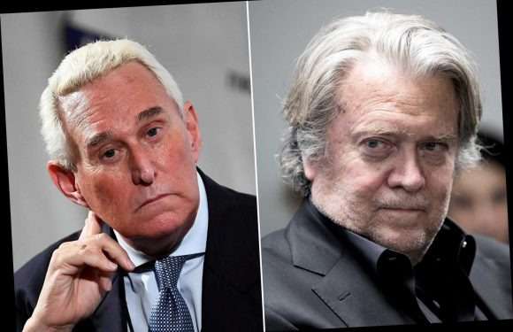 Steve Bannon says Roger Stone was WikiLeaks 'access point'
