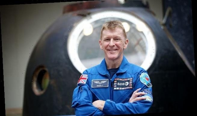 Tim Peake says investment in R&D allows the UK to reap rewards