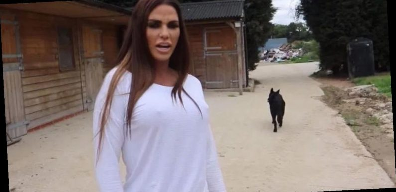 """Katie Price set to sign up for Celebs On The Farm in a """"desperate"""" money bid"""