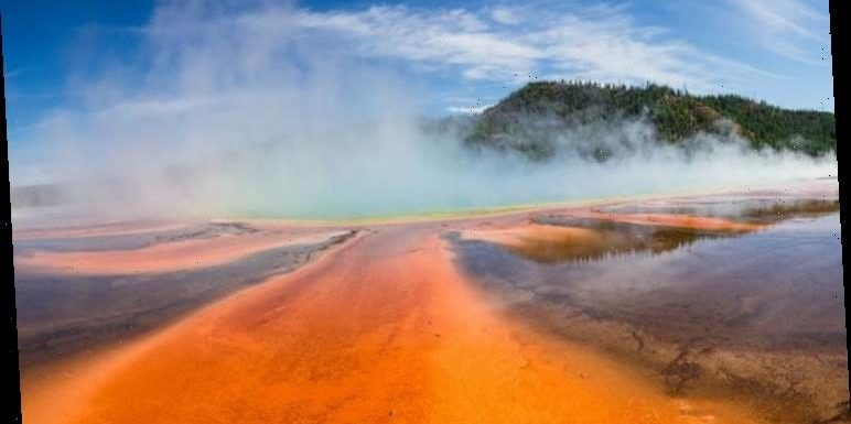 Yellowstone volcano: USGS's decade-long warning over'enormous effects'revealed