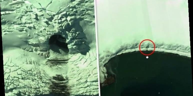 Antarctica discovery: Mysterious 'man-made' cave EXPOSED on Google Maps 'What is hiding?'