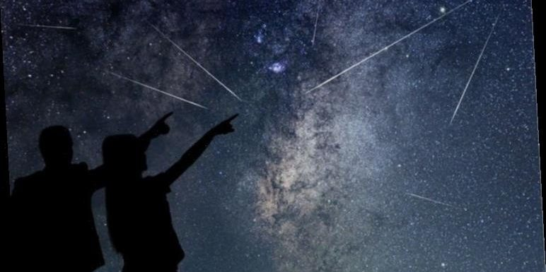Ursid meteor shower: Last meteor shower of the DECADE to peak tonight
