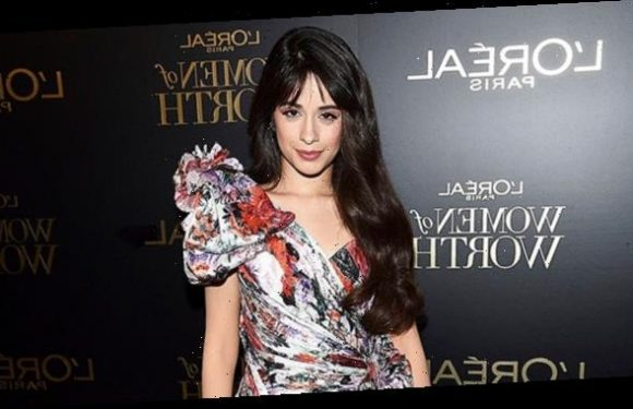 Camila Cabello, Amber Heard & More Stars Stun At 14th Annual L'Oréal Women Of Worth Party