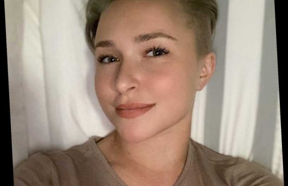 Hayden Panettiere Debuts Chic New Pixie Cut as She Tweets for the First Time in Nine Months