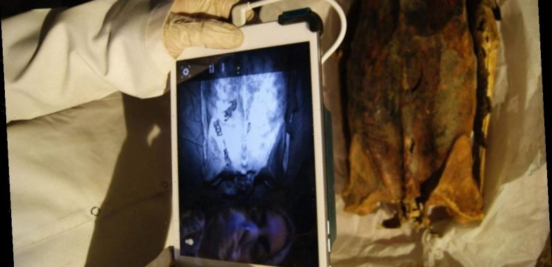 Infrared images reveal hidden tattoos on Egyptian female mummies