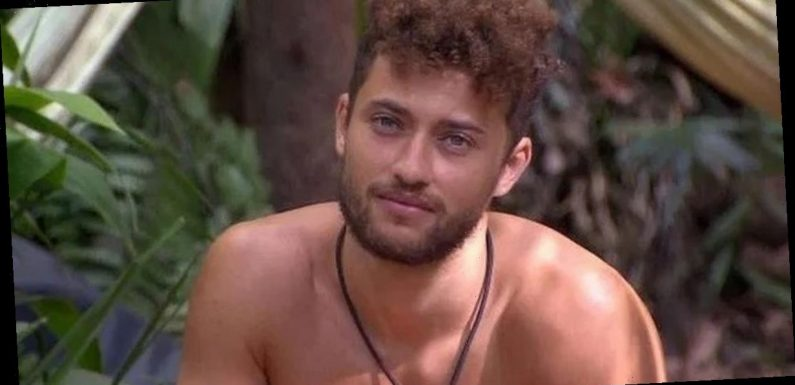 I'm A Celeb's Myles Stephenson 'punched in the head in violent brawl'