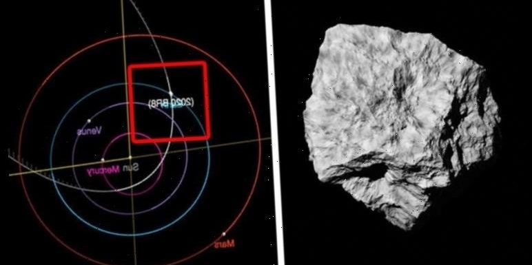 Asteroid shock: NASA spots a 65,000MPH rock heading towards Earth tomorrow – Will it hit?