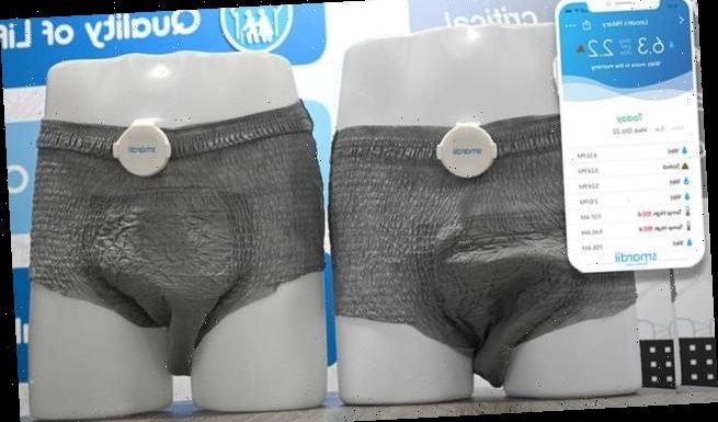 New 'smart diaper' for adults shown at CES will monitor body functions