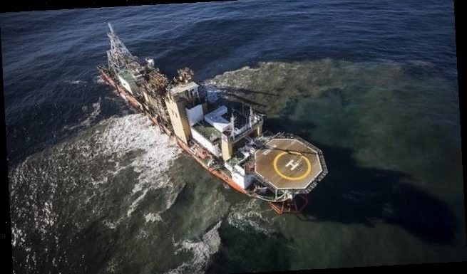 Mining the sea floor for metals could lead to irreversible damage