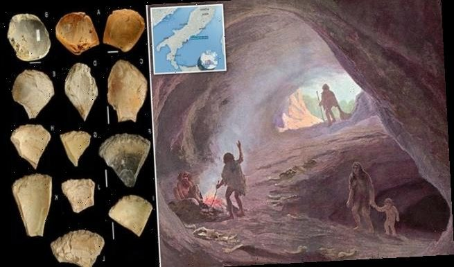 Neanderthals dived up to 13 feet underwater in search of clam shells