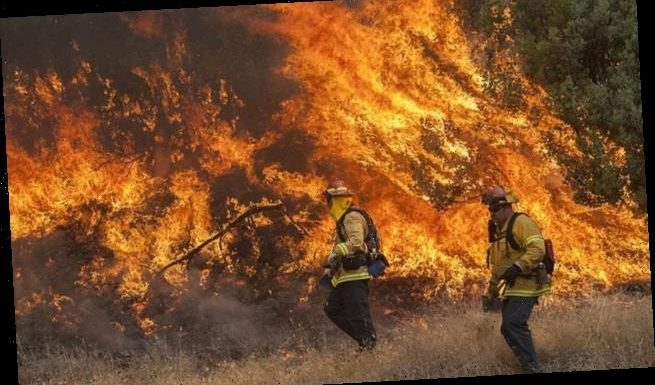 New study finds humans are now the main cause of wildfires in the US