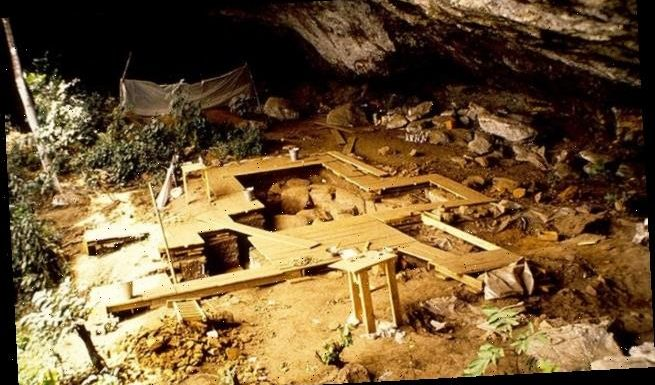 Four prehistoric boys in Cameroon reveal Africa's complex history