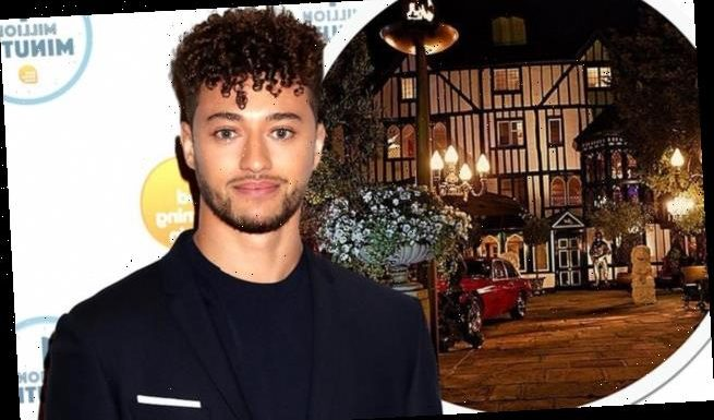 Myles Stephenson was 'whacked several times during a brawl' in Essex