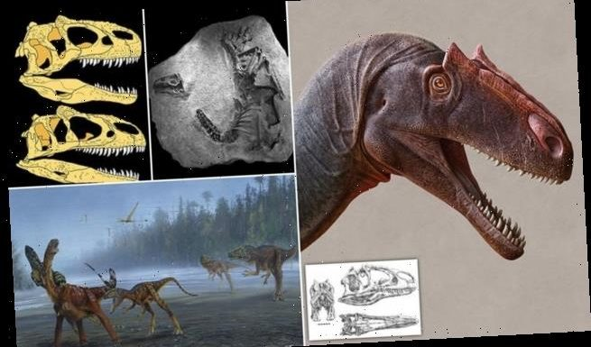 Fearsome dinosaur the size of a bus recognised as a new species