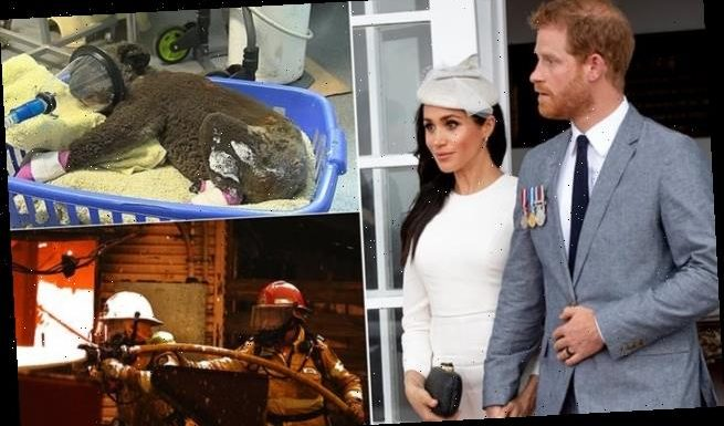 Prince Harry and Meghan pay tribute to heroes in bushfire crisis
