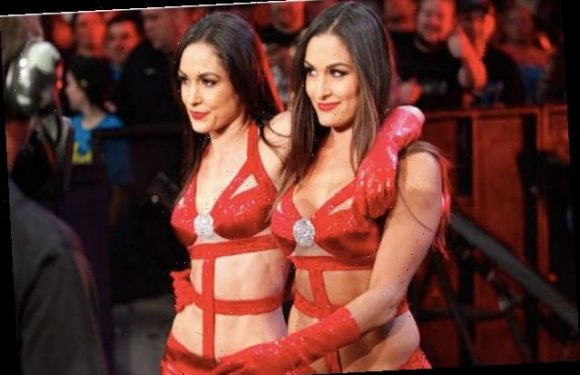 Bella Twins to Guest on Nickelodeon's 'The Substitute' (Exclusive)