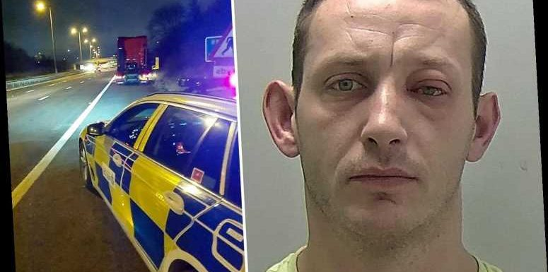 Boozy lorry driver fell out of his cab into oncoming traffic on busy motorway – The Sun